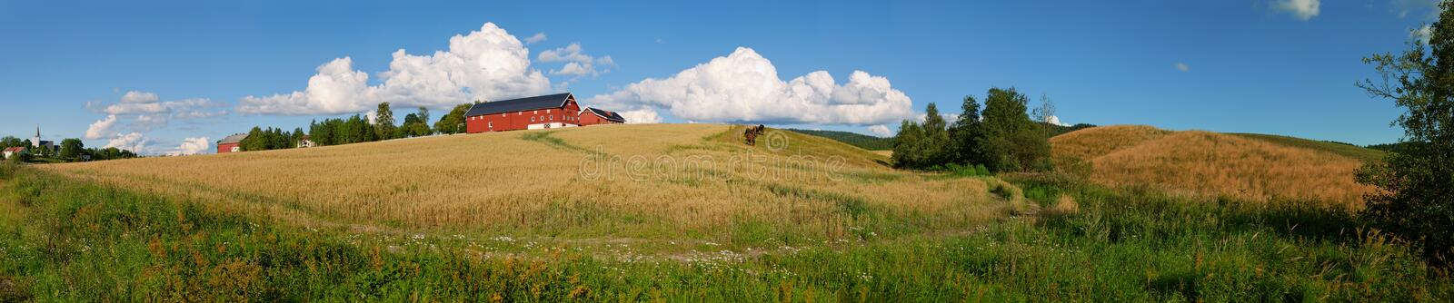 Download Norwegian Farm Panorama 1 stock image. Image of agriculture - 6177283