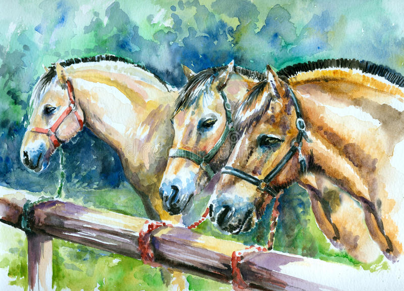 Norwegian fjord horses. Three Norwegian fjord horses waiting for riders..Picture I have painted myself with watercolors royalty free illustration