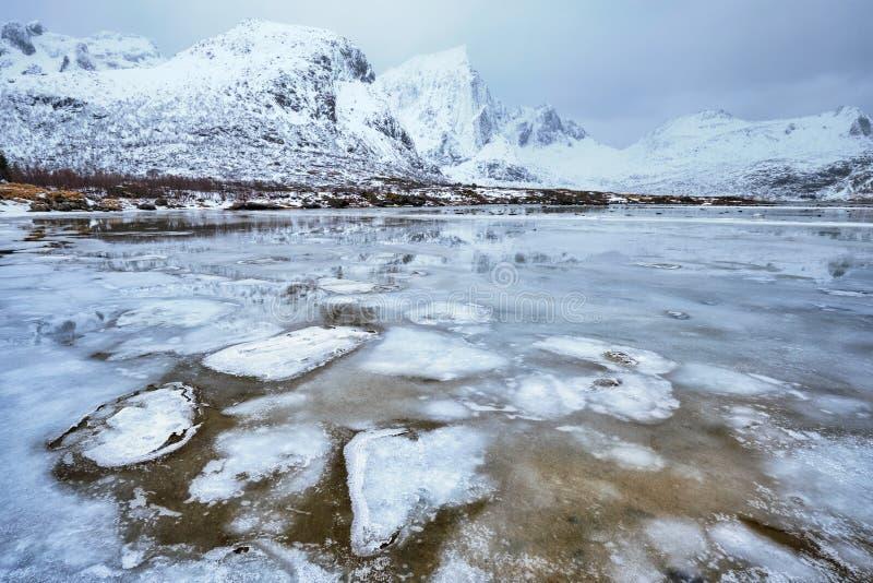 Norwegian fjord in winter stock photo