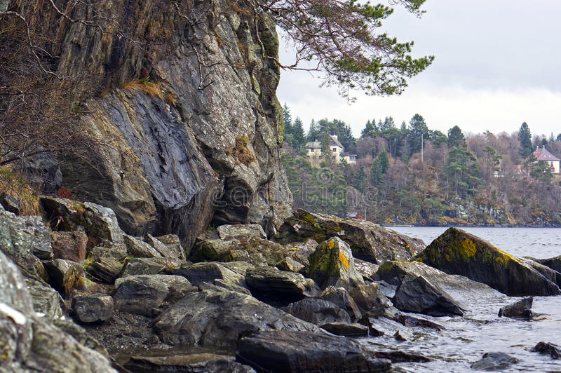 Norwegian fjords and mountains. Rocky shore, waves and trees. Bergen stock photography