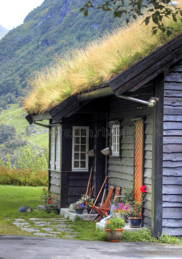 Download Norwegian House Facade With Grass Roof Stock Image - Image of more, nobody: 3000465