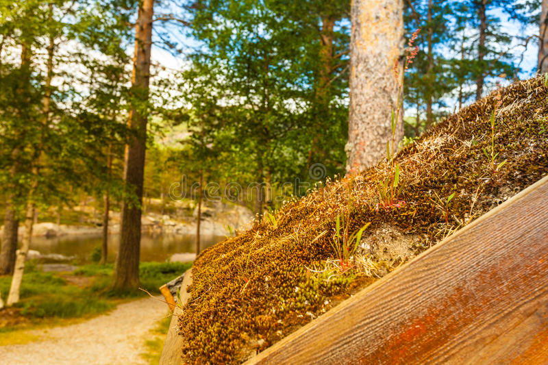 Download Norwegian House With Grass Roof Stock Photo - Image: 83714278
