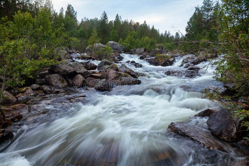Norwegian landscape with river rapids Telemark Norway Scandinavia. Rapids on small forest stream in Telemark County, Norway, Scandinavia royalty free stock images