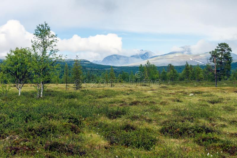 Norwegian mountain scenery landscape overlooking the beautiful mountains of Rondane national park during summer. royalty free stock photos
