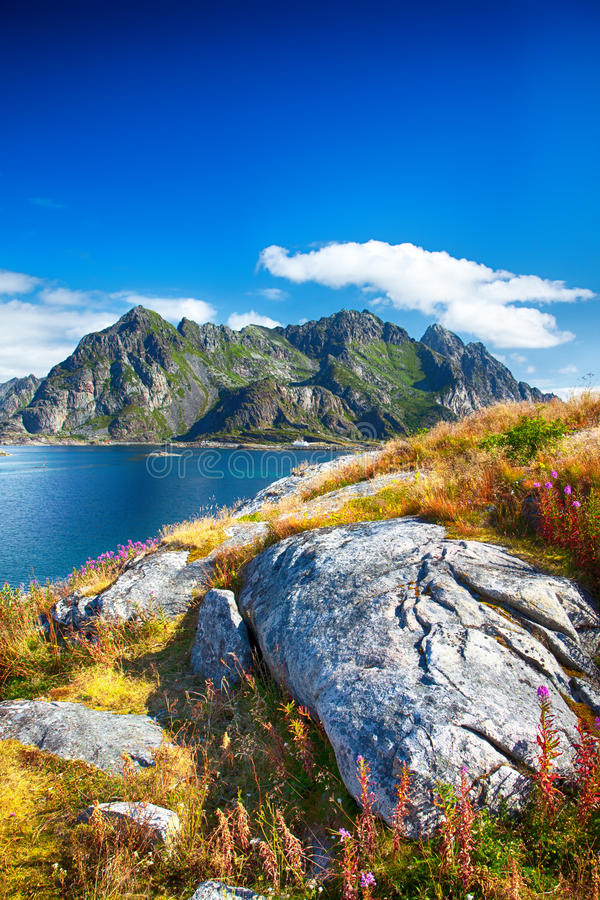 Norwegian mountains in Henningsvaer on Lofoten islands in Norway. royalty free stock images