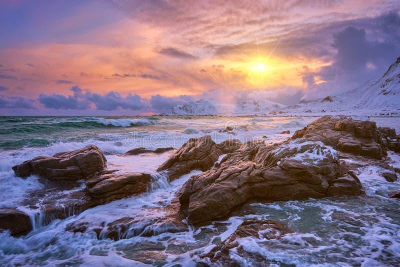 Norwegian Sea waves on rocky coast of Lofoten islands, Norway. Waves of Norwegian sea on rocky coast in fjord on sunset with sun. Skagsanden beach, Lofoten royalty free stock image