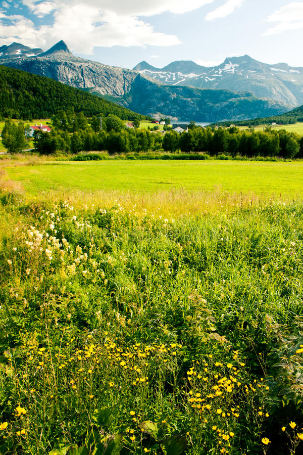 Download Norwegian village stock image. Image of green, natural - 28028579