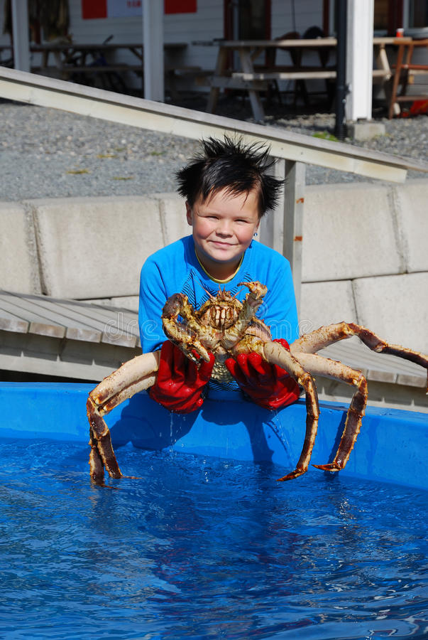 Download Norwegian Youthful Fisher With An Alive King Crab Editorial Photography - Image: 24472292
