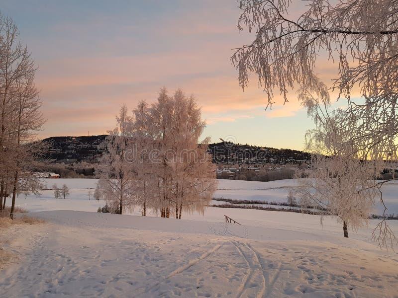 Norwegischer Winter lizenzfreie stockfotografie