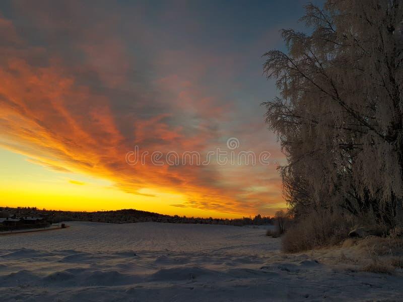 Norwegischer Winter stockfotos