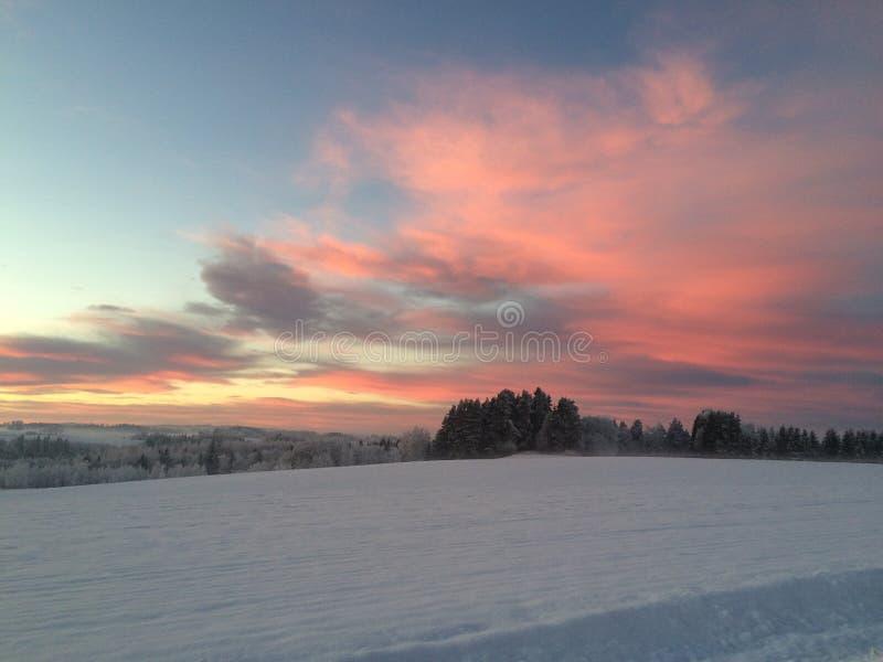 Norwegischer Winter stockfotografie