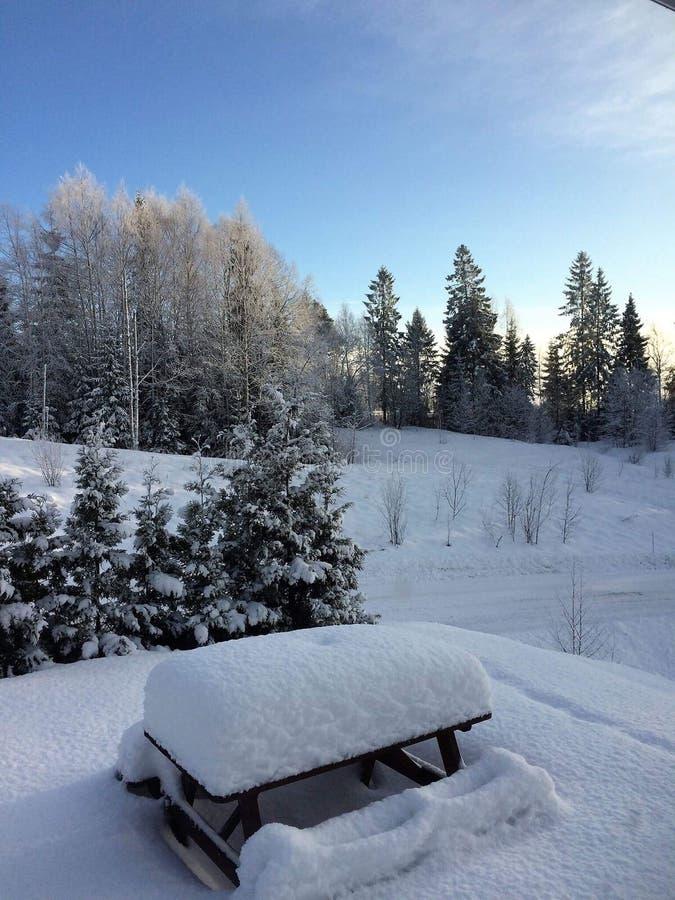 norweska zima zdjęcia stock