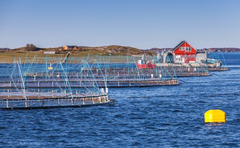 Norweski rybi gospodarstwo rolne zdjęcia stock