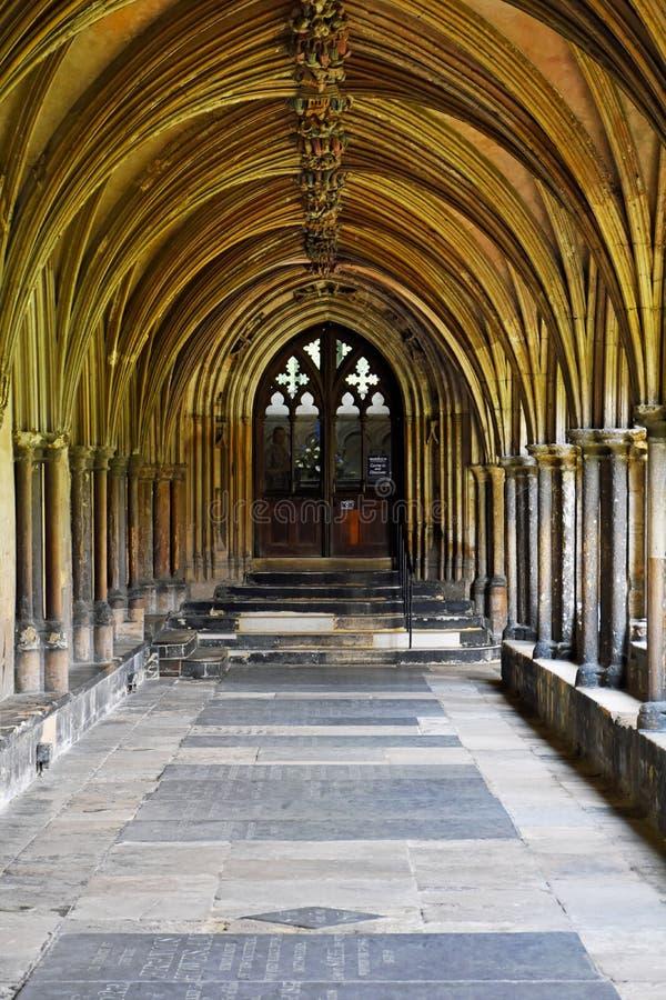 Norwich domkyrkakloster, Norfolk, England royaltyfria foton