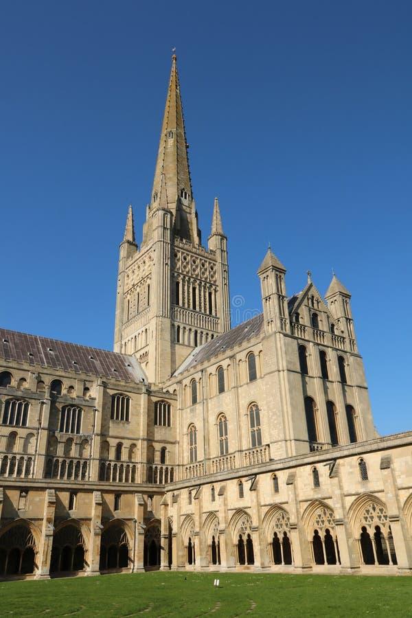 Norwich katedra zdjęcie stock