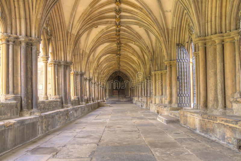 Norwich katedra obrazy stock