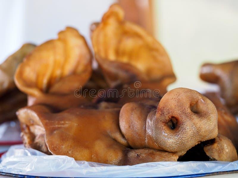 Nos świnia obrazy stock
