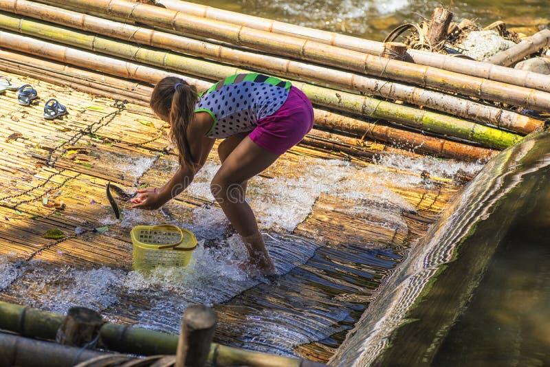 Nos bancos da menina do rio que mantém peixes travados no rio Meninas em um peixe da captura do dia de verão no rio Meninas em um imagem de stock royalty free