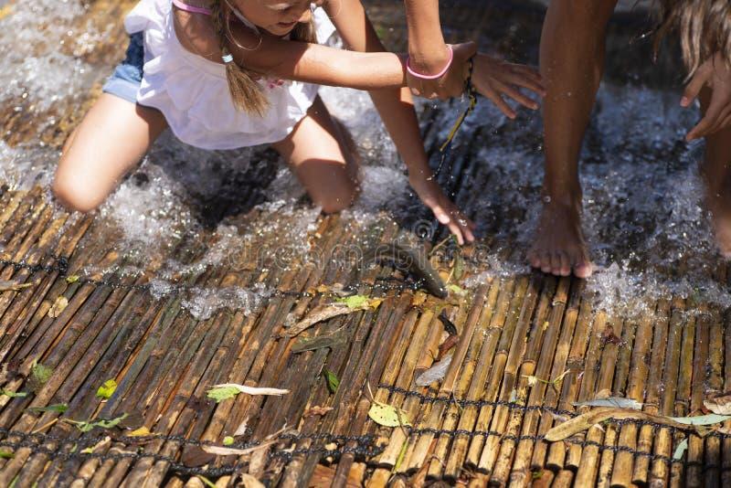 Nos bancos da menina do rio que mantém peixes travados no rio Meninas em um peixe da captura do dia de verão no rio Meninas em um imagem de stock