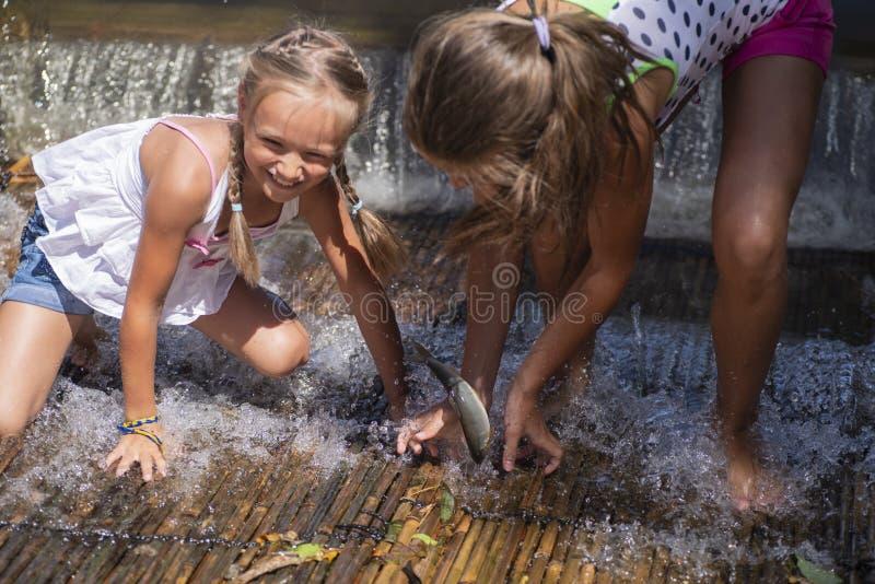 Nos bancos da menina do rio que mantém peixes travados no rio Meninas em um peixe da captura do dia de verão no rio Meninas em um imagens de stock