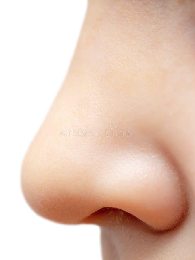 Nose boy isolated on white background stock photos
