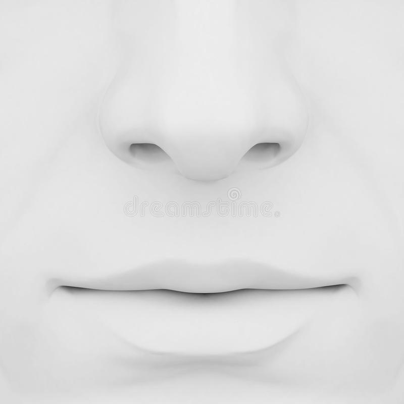 Download Nose and lips 3d stock illustration. Image of smell, parts - 27021318