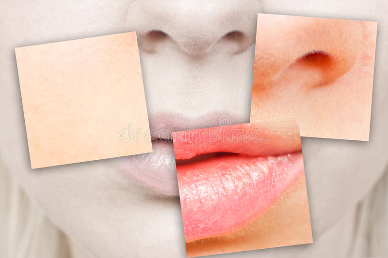 Download Nose and mouth stock image. Image of natural, makeup - 21222783