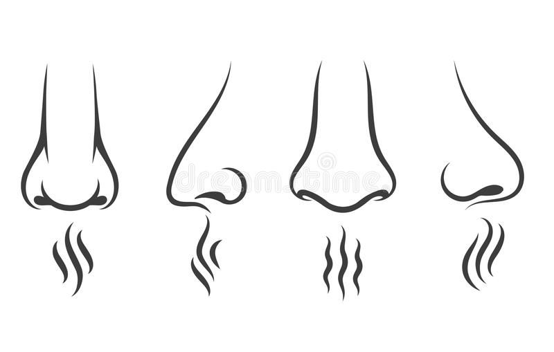 Nose smell icons. Human smelling and breathe nose senses isolated on white background stock illustration