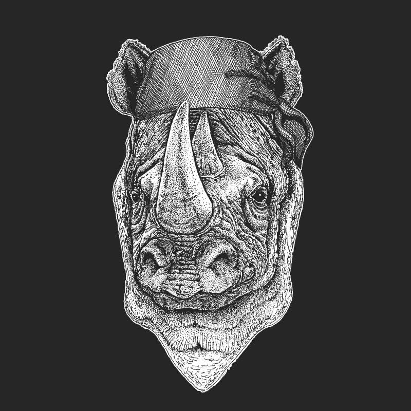 Nosorożec, nosorożec Chłodno pirat, żeglarz, seawolf, żeglarz, rowerzysty zwierzę dla tatuażu, koszulka, emblemat, odznaka, logo, royalty ilustracja