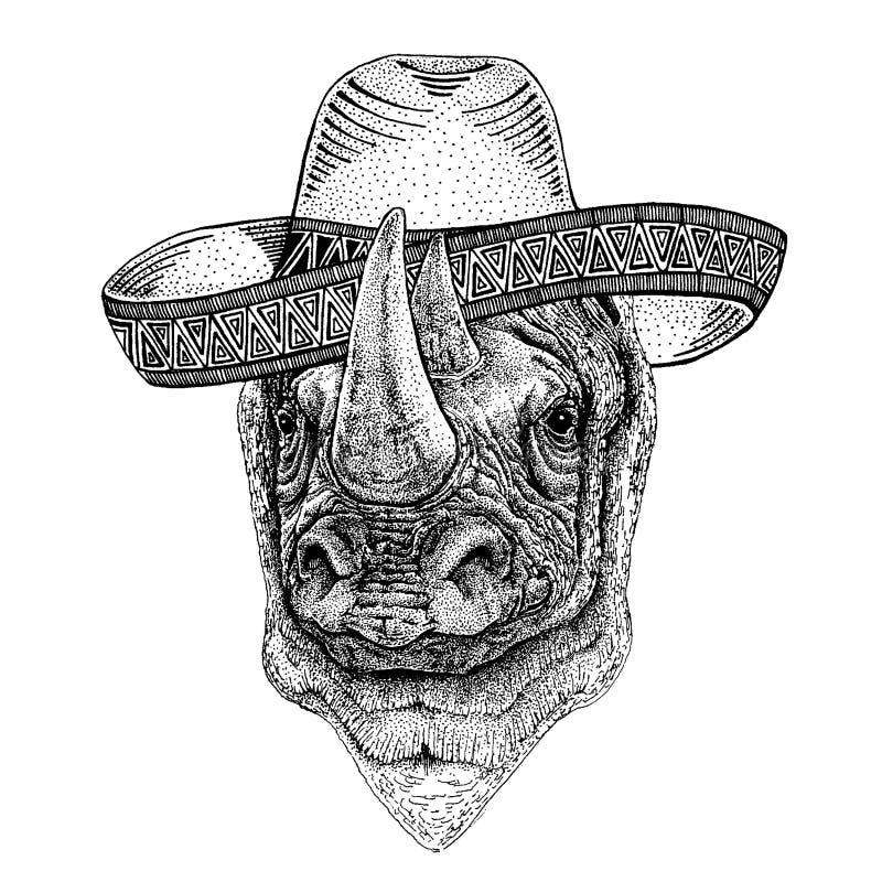 Nosorożec, nosorożec jest ubranym tradycyjnego meksykańskiego kapelusz Klasyczny pi?ropusz, fiesta, przyj?cie royalty ilustracja