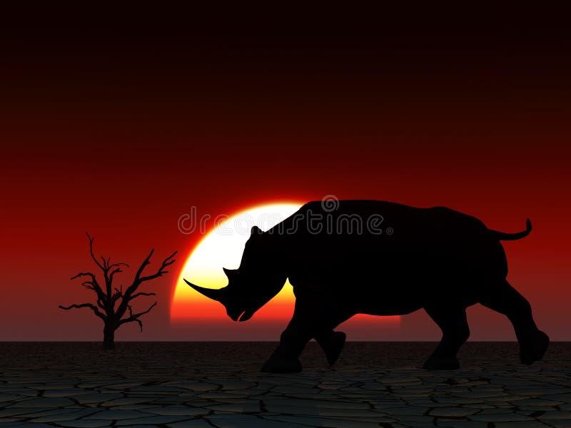 Nosorożec Przyroda 23 fotografia stock