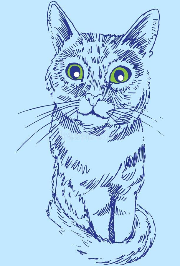 Nosso gato Molly imagem de stock