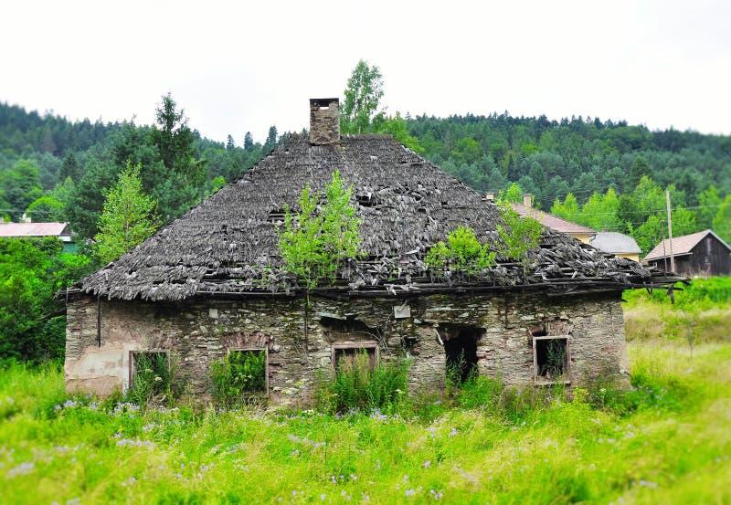 Nostalgisch verlaten geruïneerd huis met bomen op het dak, Slowakije stock foto's