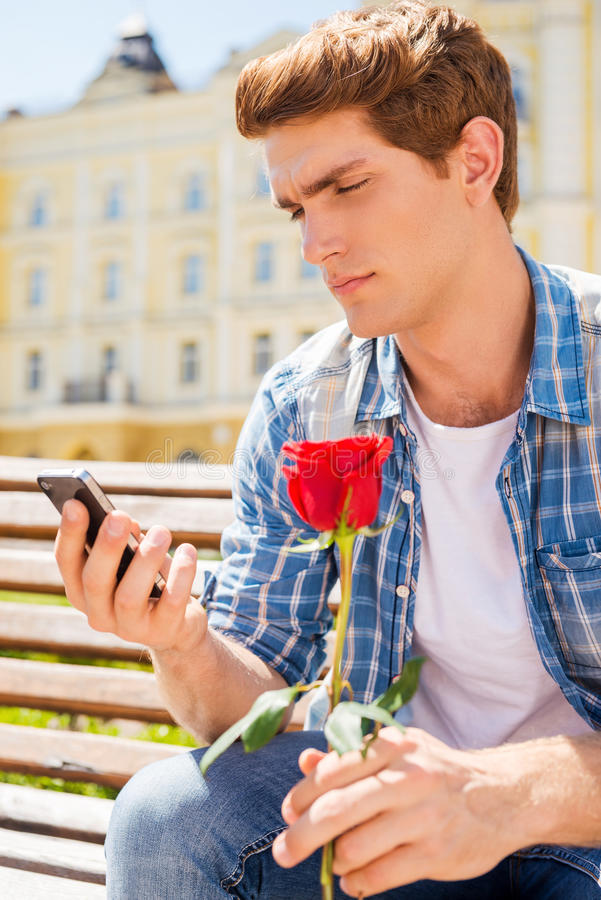 She is not coming. Depressed young man holding single rose and looking at his mobile phone while sitting on the bench stock photo