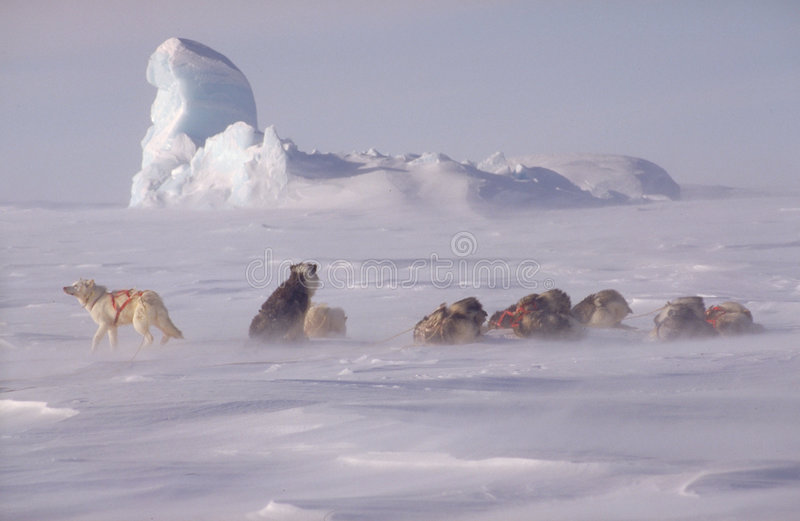 Download Not Far From The North Pole Stock Illustration - Image: 749202