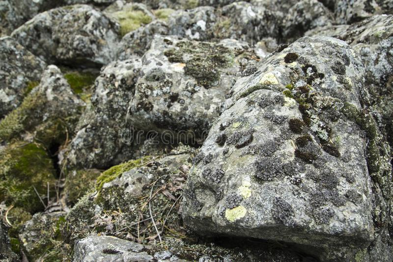Not possible to cross these old mossy stones stock photo