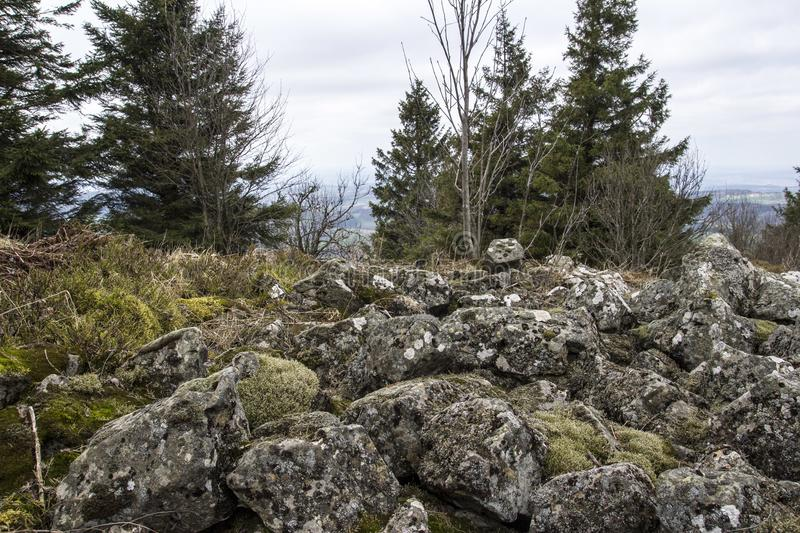 Not possible to cross these rocks. Mixed view on moss and stones. A field of stones on a mountain in germany stock photography