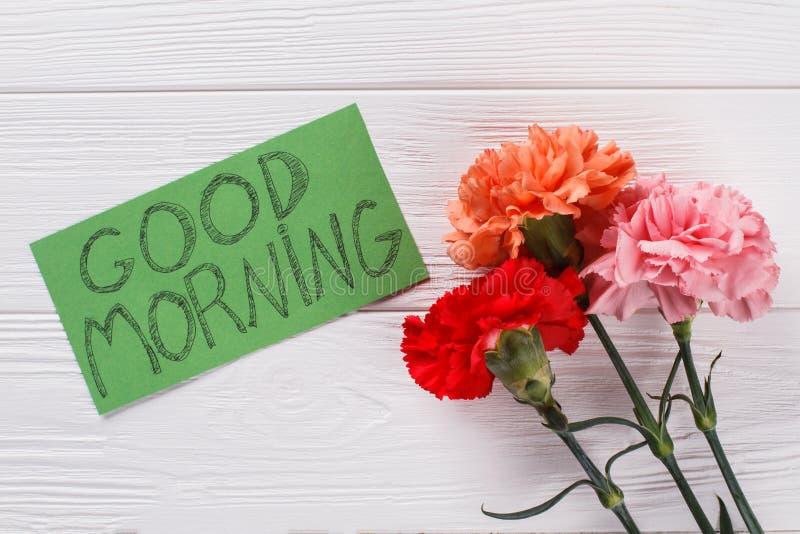 Nota di desiderio di buongiorno e fiori variopinti del garofano immagini stock
