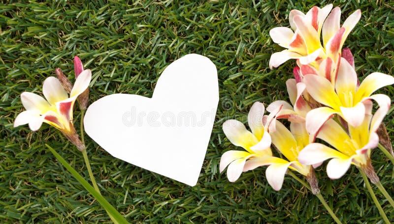 Nota vazia na forma do coração, com flores fotografia de stock