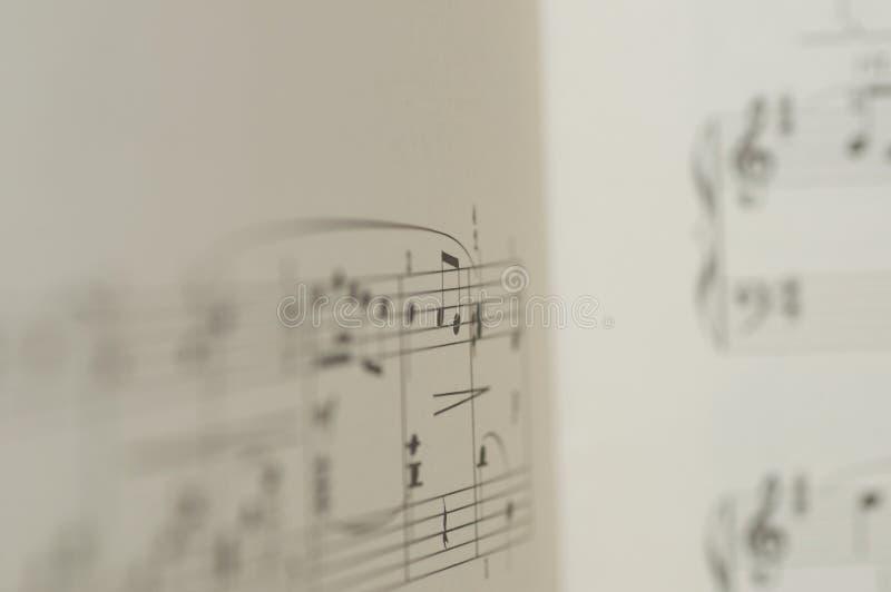 Notas da música no fundo branco ilustração do vetor