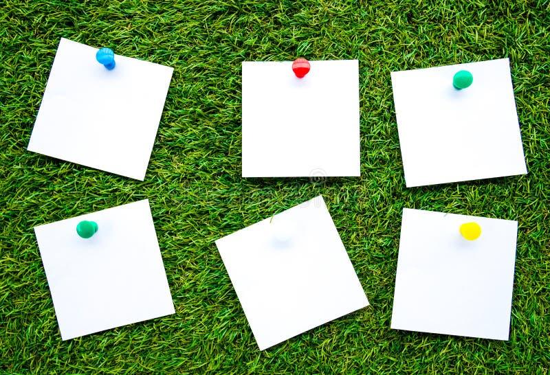 Notas del color sólido, aisladas en fondo artificial de la hierba foto de archivo libre de regalías