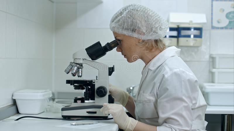 Notas médicas fêmeas bonitos da escrita do pesquisador ao usar seu microscópio em um laboratório imagens de stock