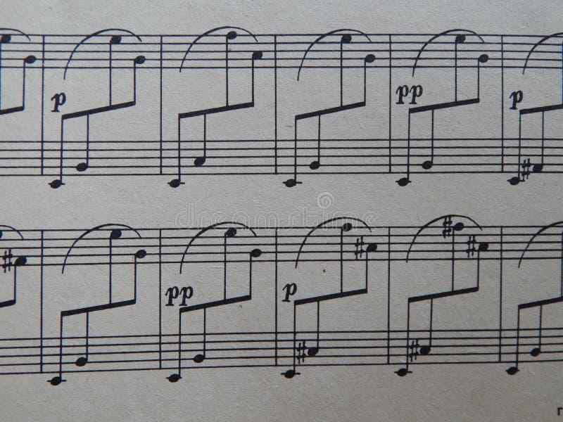 Notas para o solfeggio das lições de música imagem de stock