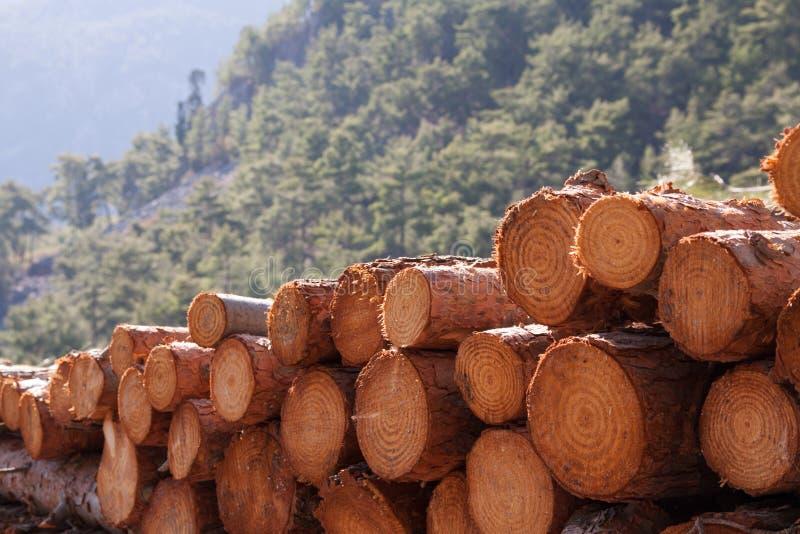 Notation de bois de construction photo libre de droits