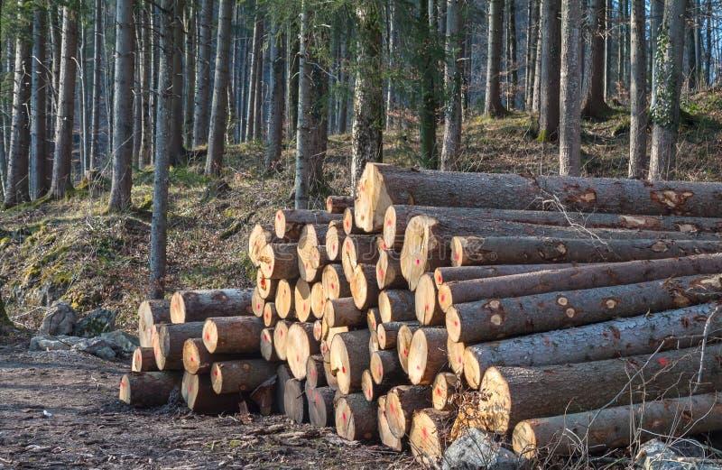 Notation de bois de construction image stock