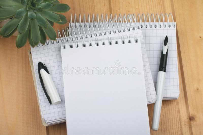 Notatniki z eleganckim piórem na drewnianej powierzchni zdjęcie stock