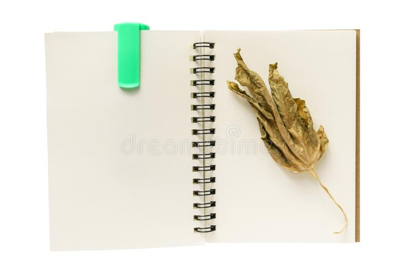 Note book, dry leaf and a marker pen royalty free stock photos