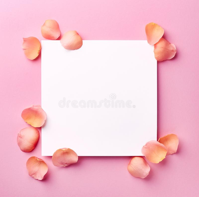 Note de papier blanc et pétales de rose roses photos stock