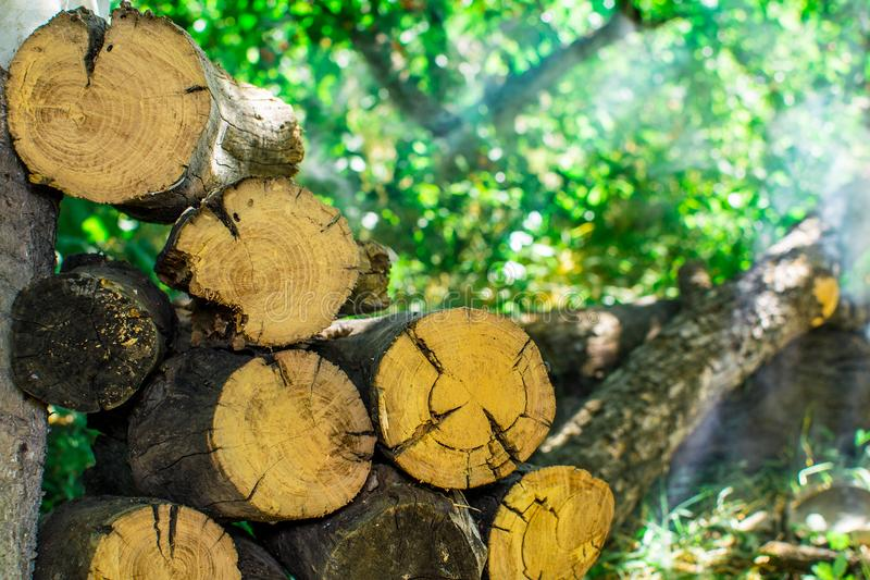 Note la pile du bois de chauffage photos libres de droits