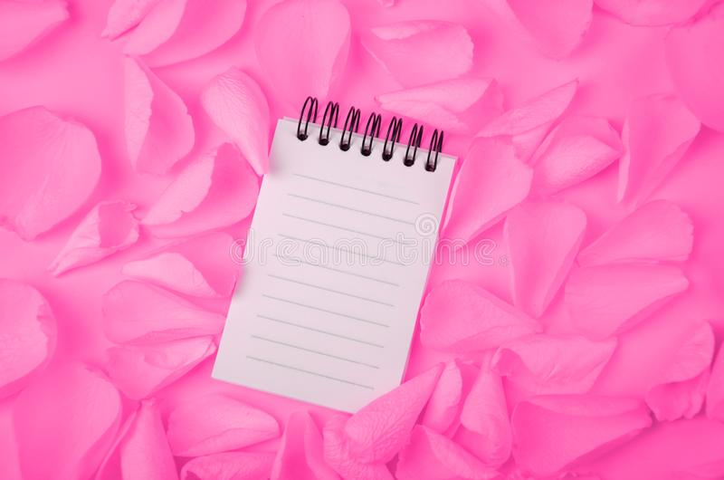 Note pad open empty sheet in rose petals on solid color paper background romantic template. Image royalty free stock images